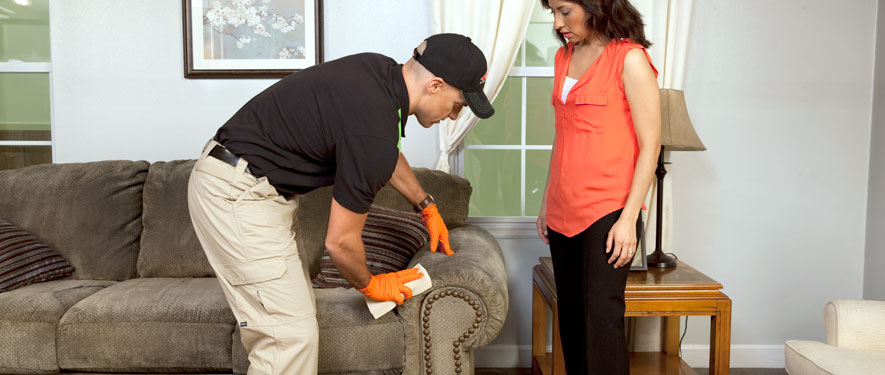 Lakeport, CA carpet upholstery cleaning