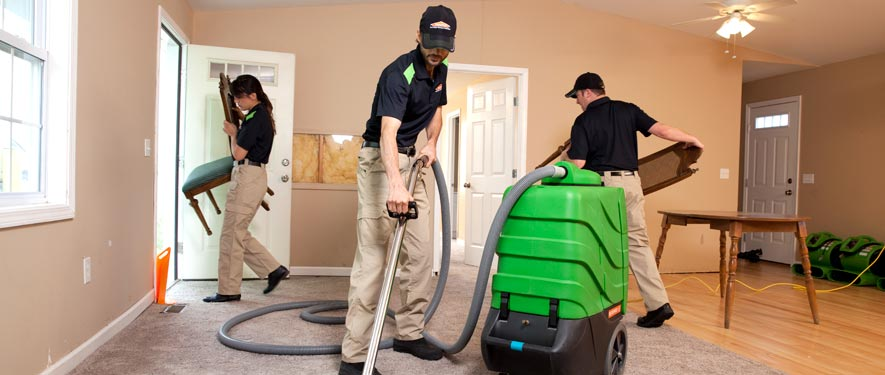 Lakeport, CA cleaning services